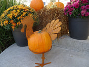 Turkey Pumpkin