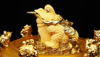 Feng Shui Resin Three Legged Toad Money Frogs with Coin on Golden Base