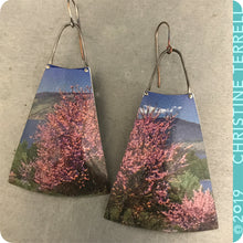 Load image into Gallery viewer, Fruited Plains Upcycled Vintage Tin Earrings
