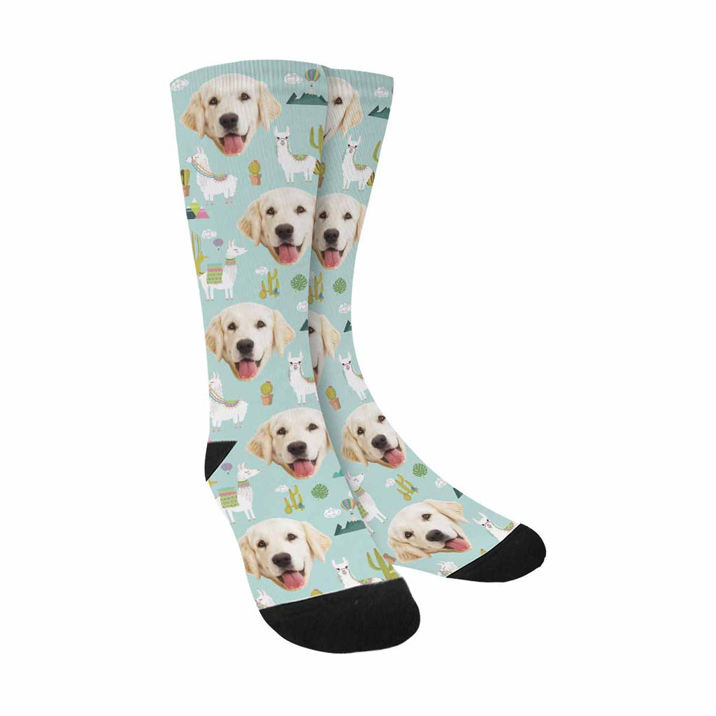Custom Printed Photo Cactus and Llama Pet Socks