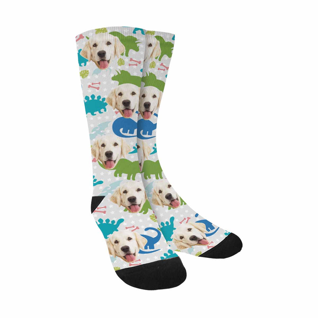 Custom Printed Photo Funny Colorful Cute Dinosaurs Pet Socks