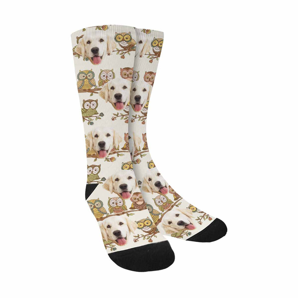Personalized Picture Cute Owls Dog Socks
