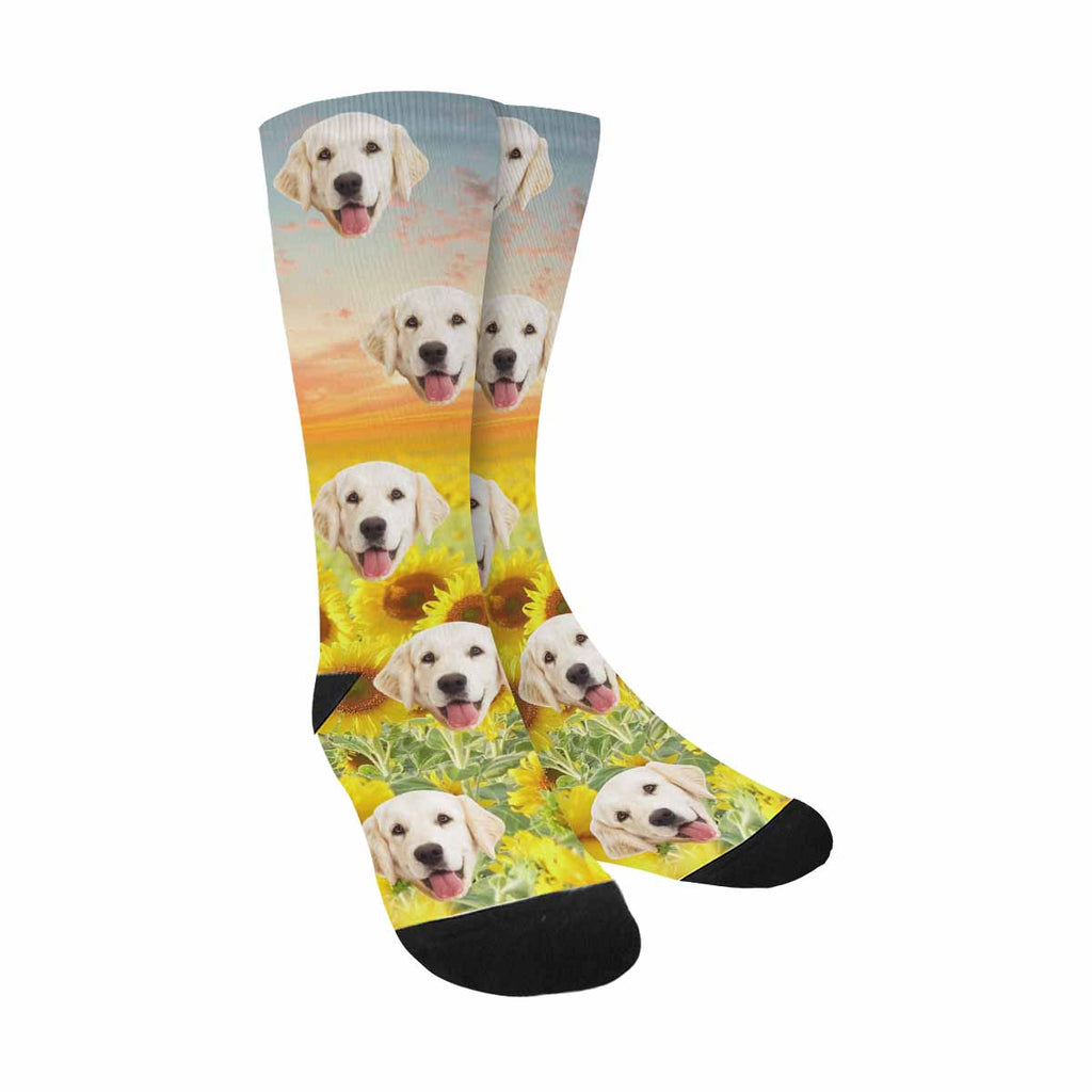 Personalized Picture Beautiful Sunflowers Dog Socks, Oil Painting