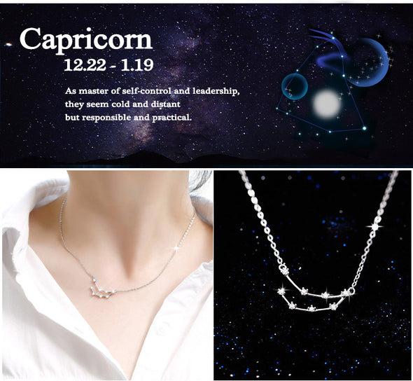 Capricorn - Creative 12 Constellation CZ Astrology Horoscope Sign Necklace