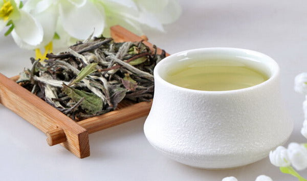 11 Amazing Benefits of White tea you need to know