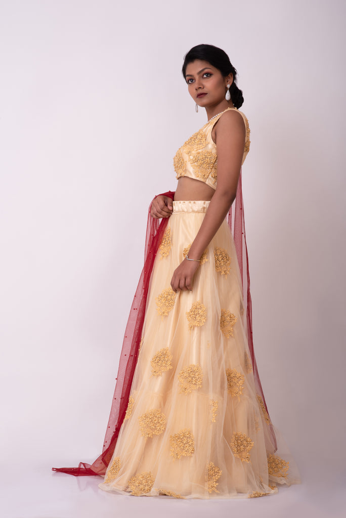 Beige net embroidered lehanga with pleated belt