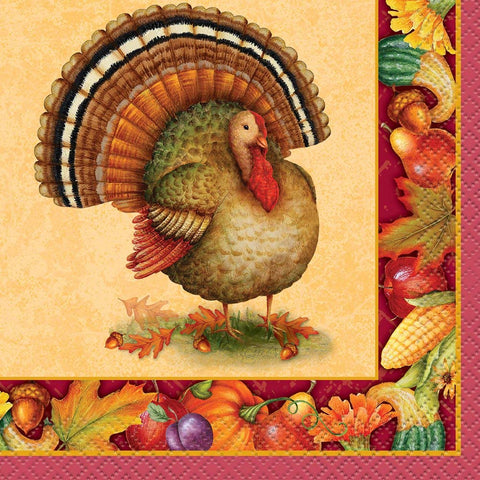 Festive Turkey Thanksgiving Dinner Plates 8ct