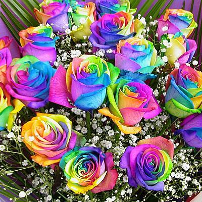 Rainbow Flowers Diamond Painting Kit - DIY Rainbow Flowers-12