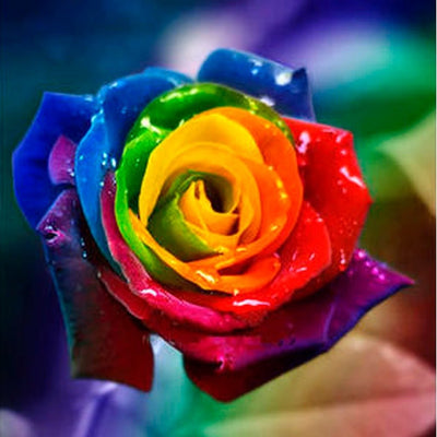 Rainbow Flowers Diamond Painting Kit - DIY Rainbow Flowers-13