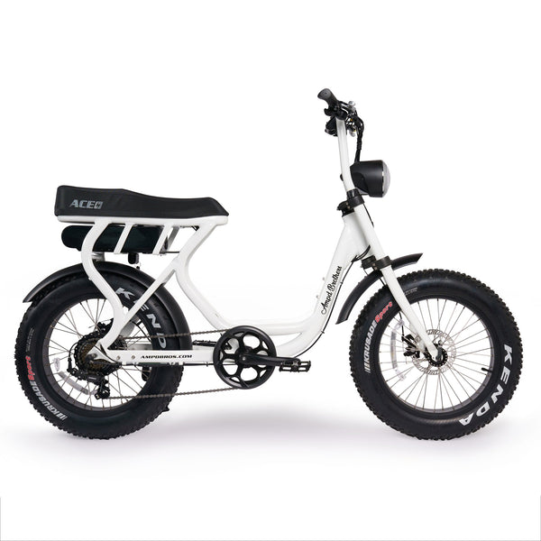 ACE-S FAT TYRE ELECTRIC BIKE - Step Through