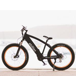 Skillion Lite Electric Bicycle