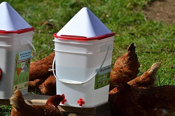(Buy more save more!!) Horizontal Side Mount Chicken Waterer