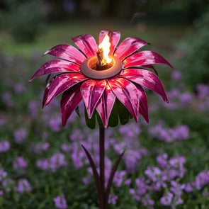 Lit Bishop Dahlia Torch in flower bed