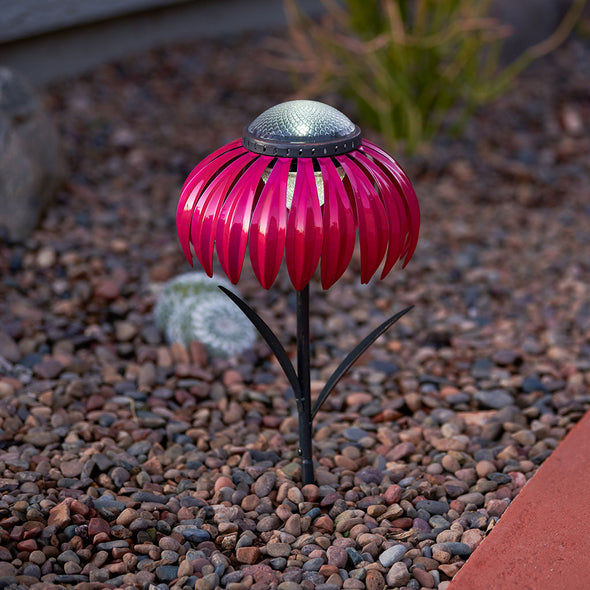Pink Coneflower Solar Light in flower bed