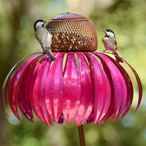 Pink Coneflower Bird Feeder with two birds perched