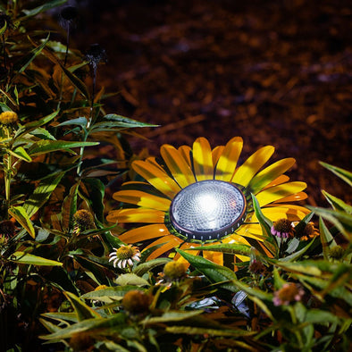 Yellow Daisy Solar Light in garden