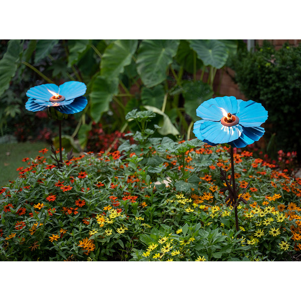 Two lit Blue Poppy Torches in garden bed