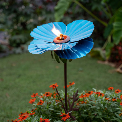 Blue Poppy Torch in yard with flowers