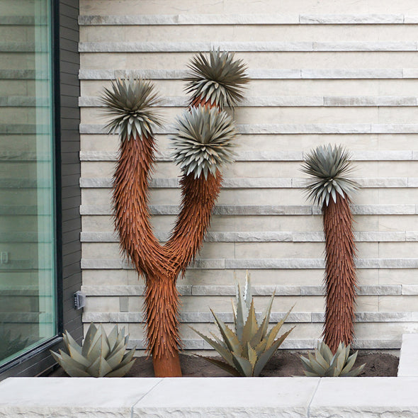 Two Joshua Trees in landscape bed, with metal agaves
