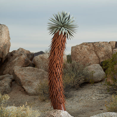 Steel Joshua Tree with desert background