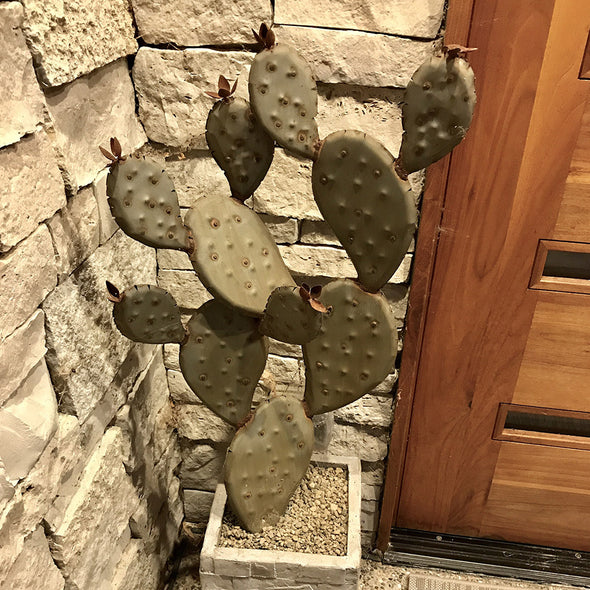 Metal Prickly Pear sculpture in landscape pot