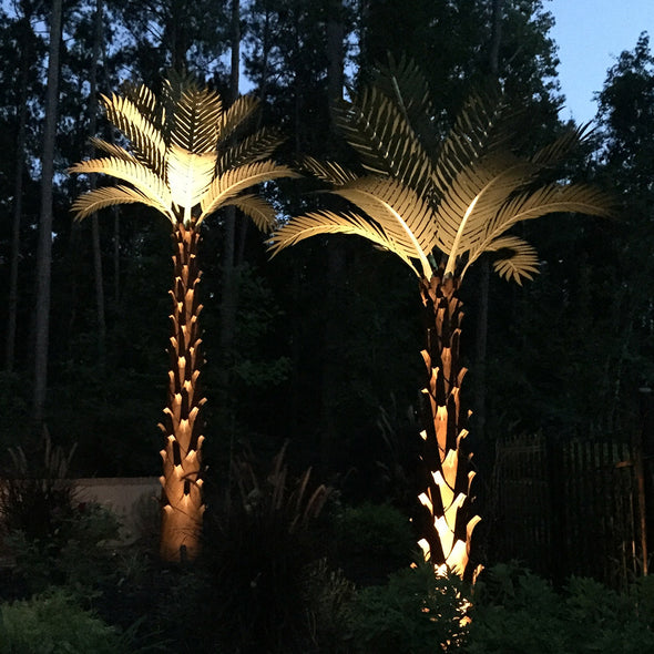 Palm Trees with accent landscape lighting