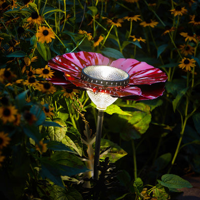 Red Poppy Solar Light lit up in garden