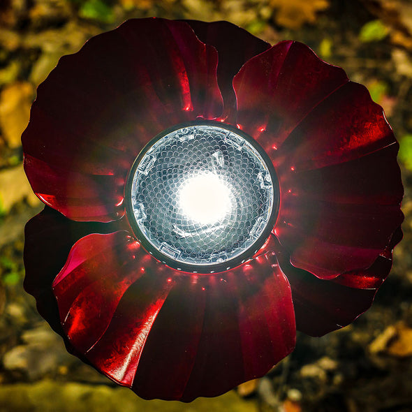 Red Poppy Solar Light from above