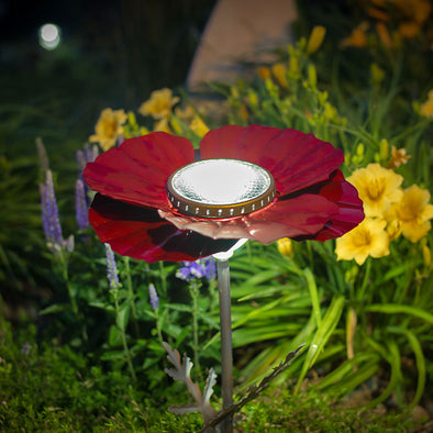 Red Poppy Solar Light lit up in flower bed