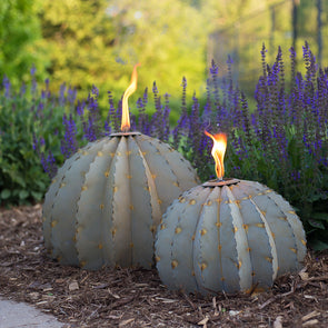 Barrel Cactus Garden Torch