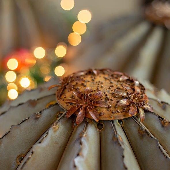 Barrel Cactus Torch Trio