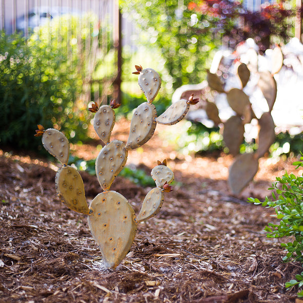 Steel Prickly Pear Sculpture in mulch bed - Chico