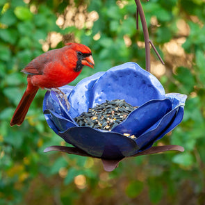 Mystic Merlin Bird Feeder