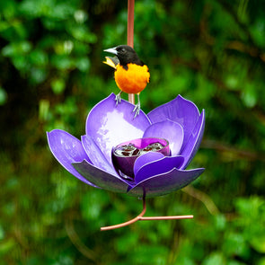 Purple Prince Magnolia Bird Feeder