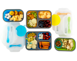 Family Bundle - 4 Flexy Lunch Boxes