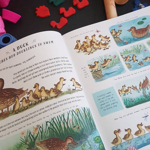 Slow Down : Bring Calm to a Busy World with 50 Nature Stories (hardback book by Rachel Williams)