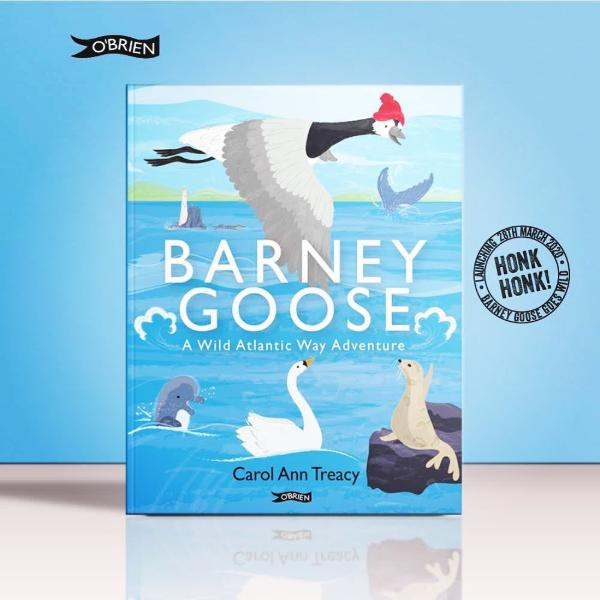 Barney Goose - a Wild Atlantic Way Adventure (hardback book by Carol Ann Treacy) - jiminy eco-toys