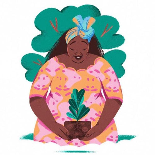 Dr. Wangari Maathai Plants a Forest: A Good Night Stories for Rebel Girls Chapter Book (hardback) - jiminy eco-toys