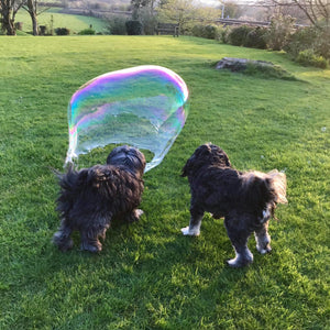 Eco Doggie Giant Bubbles! - jiminy eco-toys
