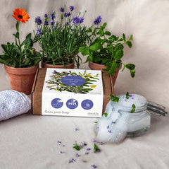 Grow Your Soap - bundle of 3