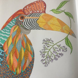 Millie Marotta's Brilliant Beasts (colouring book)