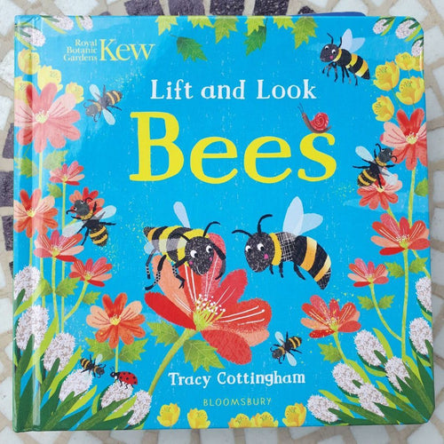 Kew: Lift and Look Bees (a board book by Tracy Cottingham) - jiminy eco-toys