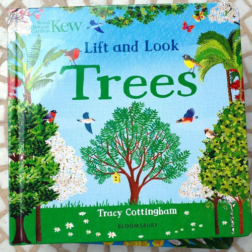 Kew: Lift and Look Trees (a board book by Tracy Cottingham) - jiminy eco-toys