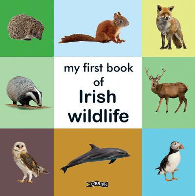 My First Book of Irish Wildlife (board book) - jiminy eco-toys