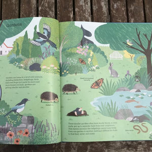 National Trust: How to Help a Hedgehog and Protect a Polar Bear (a hardback book by Jess French) MADE FAR AWAY WON'T REORDER - jiminy eco-toys