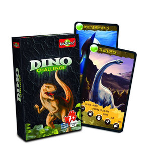 Nature Challenge - a range of group card games for ages 7+ - jiminy eco-toys