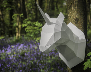 Paper Pet Kit: Unicorn head - made in Ireland - jiminy eco-toys