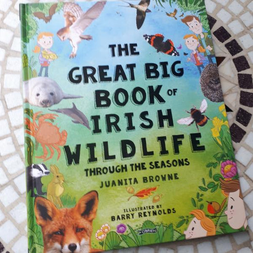 The Great Big Book of Irish Wildlife (hardback book by Juanita Browne and Barry Reynolds) - jiminy eco-toys