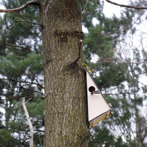 Wooden bird house - jiminy eco-toys