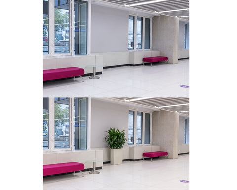 Before/After Office Planting EMFD